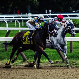 horse race demonstration